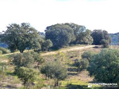 Cárcavas del Río Perales - Sierra Oeste de Madrid; excursiones y senderismo madrid; excursiones
